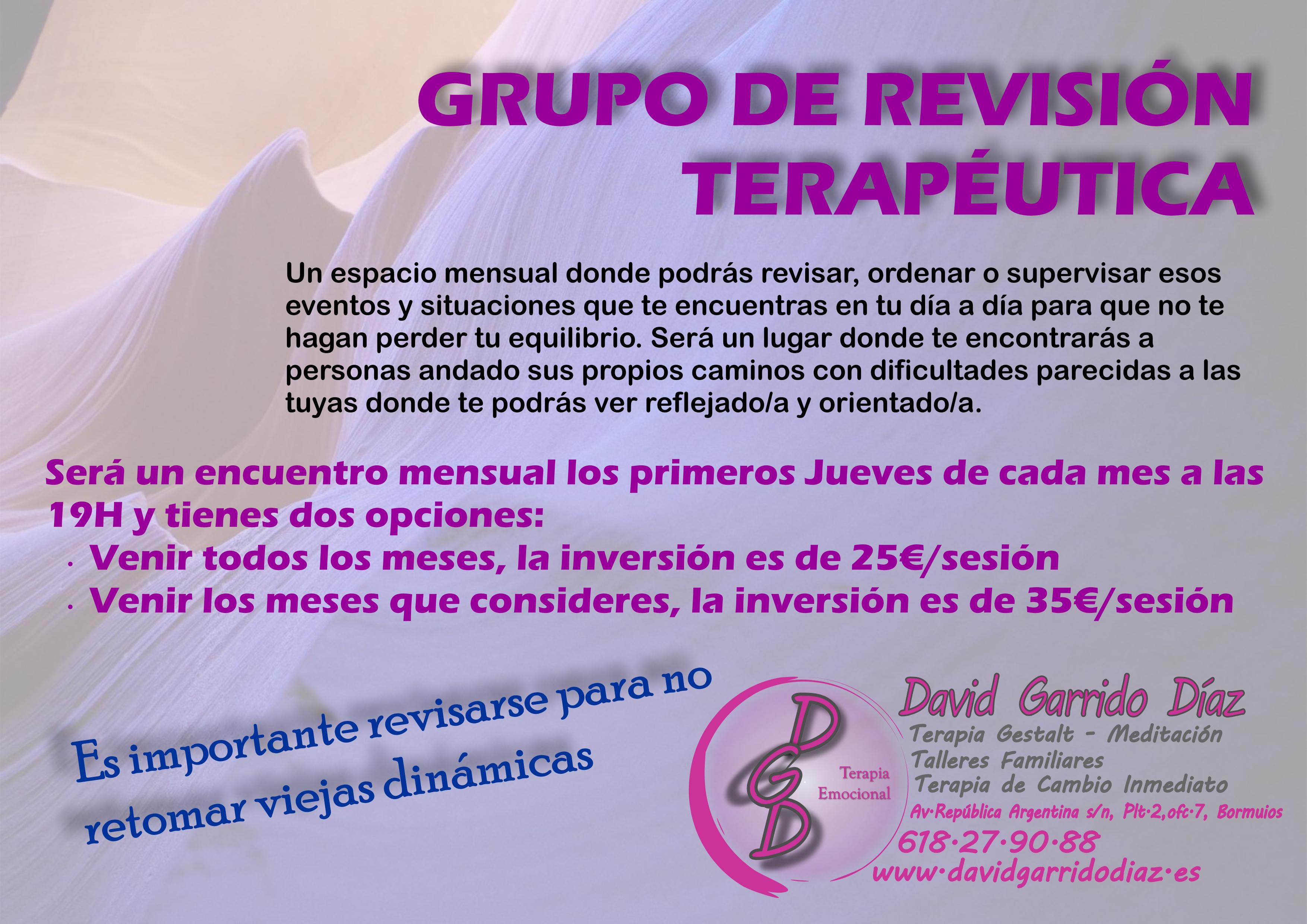 Grupo de revisión terapéutica